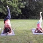 yoga in het onderwijs gras
